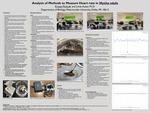 Analysis of Methods to Measure Heart Rate in Mytilus edulis