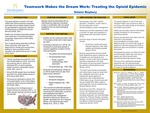 Team Work Makes the Dream Work: Treating the Opioid Epidemic by Selena Maybury